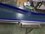 La courroie et Latte Hairise modulaire haut système de convoyeur à chaîne