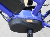 Grüne Energien-mittlerer Bewegungsfettes elektrisches Fahrrad mit En15194