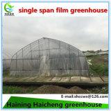 Heißes BAD galvanisiertes haltbarer Stahlfilm-grünes Haus für Frucht