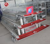 Серебряная звезда Автоматическое оборудование для птицеводства / торговой марки цыпленок слоя каркаса