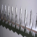 Защищенный спайк стены птицы (спайк птицы)