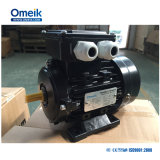 Ms 0.12kw-315kw 삼상 AC 모터