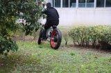 [لونغ رنج] [إ] دهن درّاجة