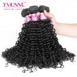 Capelli ricci del Virgin di estensione dei capelli del commercio all'ingrosso di modo di Yvonne di alta qualità del tessuto brasiliano dei capelli