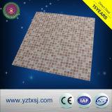 中国の競争価格のプラスチック壁パネルか天井板