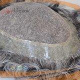 De grijze Pruik van Mens van de Rand van het Haar Pu (pPG-l-01941)