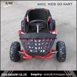 大人車80ccがKarts行ったり/車行く子供はKartまたは小型モンスタートラックは販売のためのKart行く