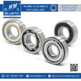 China Beairng Factory Fornecedor Sigle-Row Auto Parts 6205 Rolamento de esferas