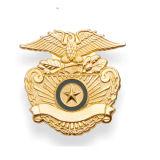 Logo de la sécurité de la décoration personnalisée de l'or de l'émail militaire insigne métallique