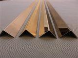 Testo fisso delle mattonelle di angolo dell'acciaio inossidabile del fornitore della Cina (acciaio inossidabile, grado 304, rivestimento della linea sottile)