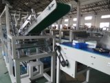 El cartón de embalaje de carga lateral de la Máquina para embalaje Wj-Llgb Pharma y de la medicina-15