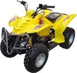 150cc ATV (quadrato) (FST-150-E)