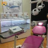 12 отверстия 36Вт Светодиодные стоматологическая исследования легких