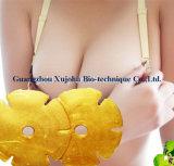 Masker van de Borst van het Gel van het Collageen van het Kristal van de Zorg van de borst het Diepe Bevochtigende Stabiliserende 24K Gouden