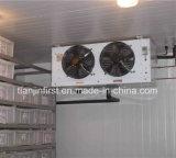 Prix d'usine Viande commerciale de haute qualité Stockage à froid / Chambre froide