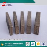 500mm Diamond Segment voor Marble Granite 40*4.5*10mm
