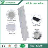 CCTV 사진기를 가진 1개의 통합 LED 태양 가로등에서 옥외 6W-120W 전부