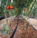 庭、農場のためのPEの滴り潅漑ベルト