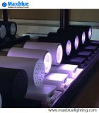 Luz de la pista de 30W LED para la iluminación de la carne fresca en el supermercado