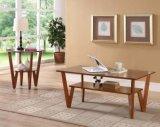 단단한 포플라 목제 책상 현대 책상 거실 책상 탁자 형식 탁자 (M-X2034)