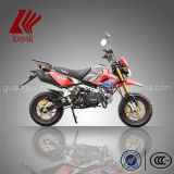 Mini-Kawasaki 110cc Pit bike Pocket Bike Dirt Bike moto (KN110GY)