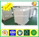 C1S Papel da placa de marfim para o bolo de embalagem