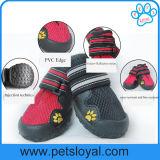 صاحب مصنع مسيكة [بت دوغ] شبكة أحذية, محبوب شريكات