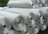 Draht Mesh Netting Used in Construction