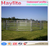 Gare de triage de vache de bovins à usage intensif de bord