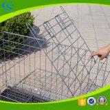 Cage extérieure matérielle de crabot de fil de fer