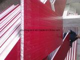 Pannello a sandwich prefabbricato del tetto & della parete ENV della costruzione (DG9-004)
