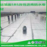 يشعل [سبس/بّ] يعّدّل [رووفينغ] غشاء من الصين