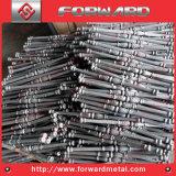 塀のための鋳造物鋼鉄花