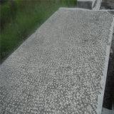Il calcare fiammeggiato di pavimentazione esterno/ha fiammeggiato le mattonelle del calcare/il lastricatore giardino del Bluestone
