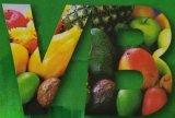 Ridurre in pani del complesso della vitamina certificato GMP B