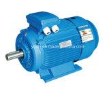 3kw 3 Phase Wechselstrom-Elektromotor-horizontaler Motor