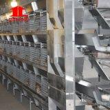 (Galvanisation chaude) cage de poulet de couche de ferme avicole de technologie de Poul