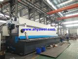 이탈리아 Esa S530 3D CNC Guillotinas Manuales