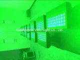 Vello bañador de pared LED impermeable al aire libre de la luz de la etapa (el color del LED H5).