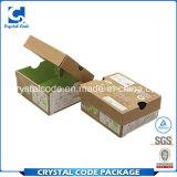 Vertiefung geschätzt mit Qualitäts-verpackenkasten