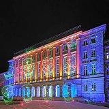 Laser do jardim do Natal com partido para o feriado Decorantion