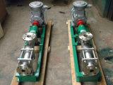 위생 스테인리스 나선식 펌프, 진보적인 구멍 펌프