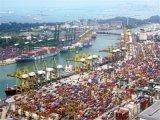 De betrouwbare Verschepende Dienst van Guangzhou aan Hamburg