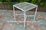 2017 새로운 디자인 PE 등나무 탁자 및 의자 옥외 가구