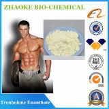 Hormona esteróide elevada 99% de Trenbolone Enanthate da pureza
