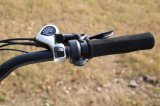 Fuente china de la fábrica del eje de la bici gorda sin cepillo del motor 3000W E