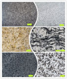Fournisseur professionnel de produits de matériau de construction de tuiles de granit et de marbre