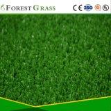 La máxima calidad de la superficie del campo de tenis de hierba sintética (TT)
