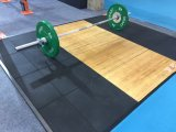Cer-anerkannte Gummibodenbelag-Matte für Gymnastik-Eignung-Gerät