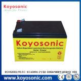 De zonne Batterij van de Batterij van de Batterij van de Droge batterij 12V Zonne Euro Zonne12V 12ah